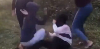 polis video