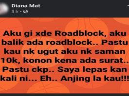 Diana Mat