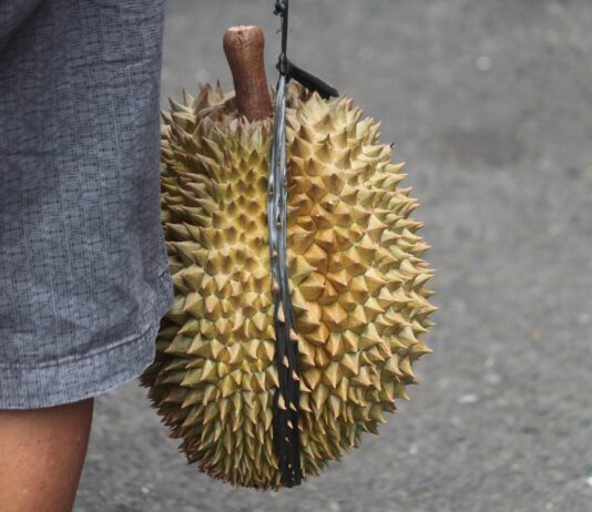 person holding yellow fruit during daytime